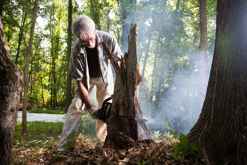 Dr Baron cuts down a stump at the site of the outdoor classroom.
