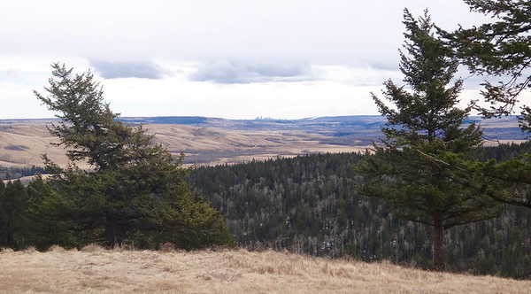 Wildcat Hills Hike