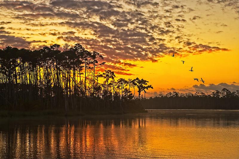 ApalachicolaSunrise1-copy.jpg