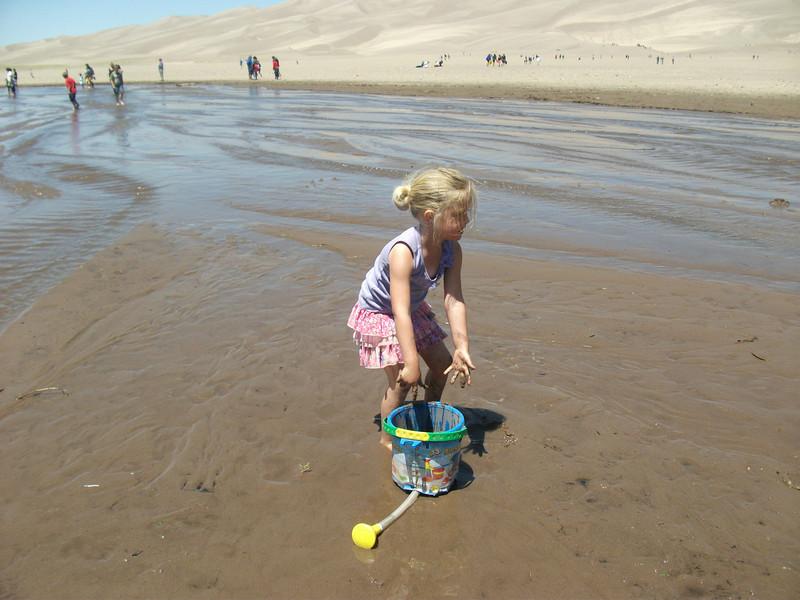 Sand Dunes 049.JPG