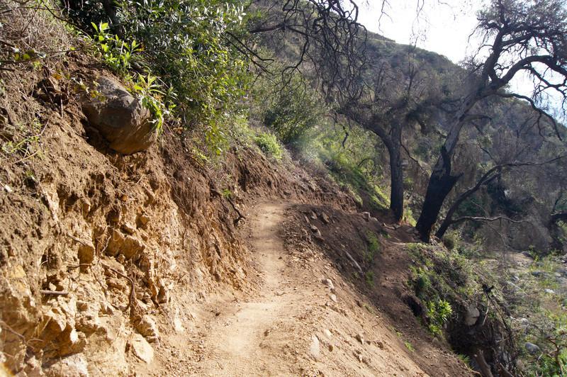 201201291619-El Prieto Trailwork.jpg