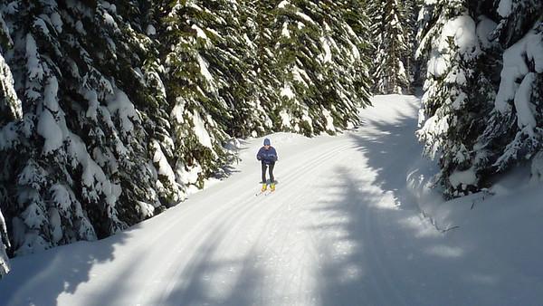 Pal Mal Hates XC Skiing !