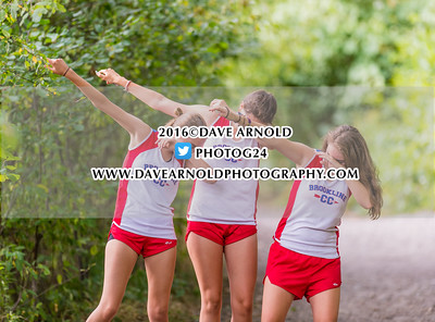 9/14/2016 - Girls JV Cross Country - Brookline, Dedham, Milton, Needham