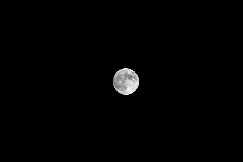 LunarEclipse2019-1.jpg