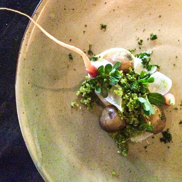 actinolite potato.jpg
