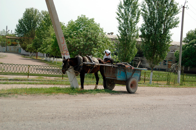 050427 3855 Uzbekistan - Samarkand - Road Trip to Tashkent _D _E _I ~E ~L.JPG