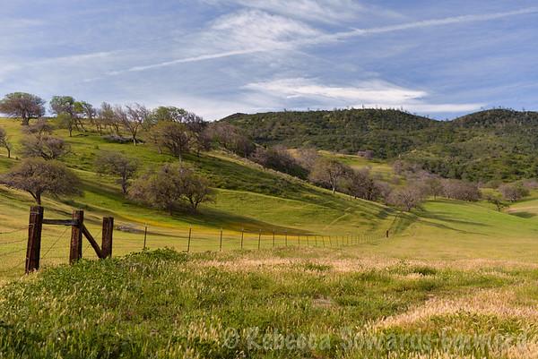 Panoche Hills (03.14-15.2015)