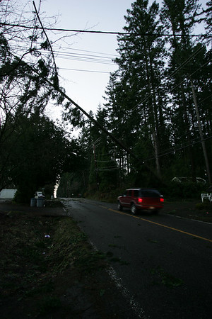 January 6th Windstorm