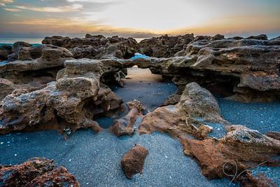 Coral Cove, FL