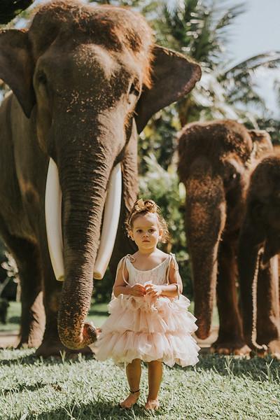 VTV_family_photoshoot_elephants_Bali_ (49).jpg
