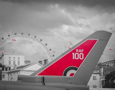 RAF100 (Horseguards Static Display)