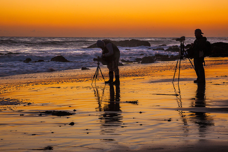 Malibu Coastal Nature Photography Workshop-4.jpg