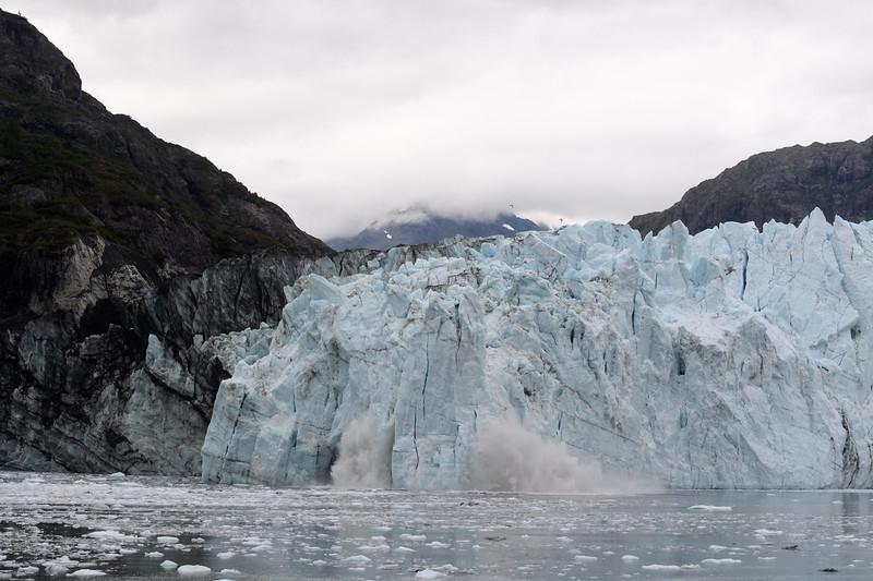 20170819__KT54646_2017-08-19 Alaska Gustavus Glacier Bay 7608.jpg