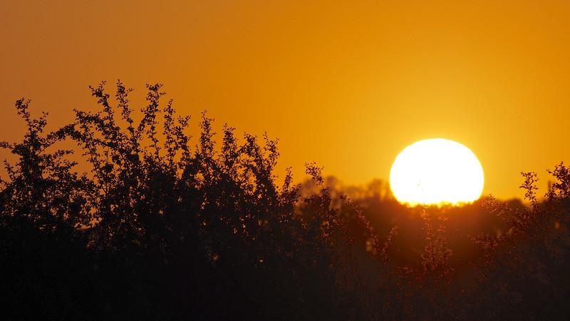 Lockdown Sunset