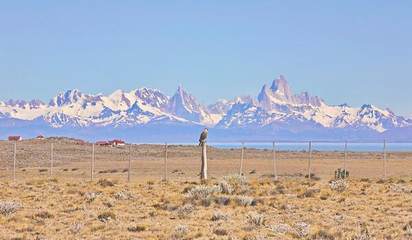 Cerro Torres & Fitz Roy : sommets mythiques
