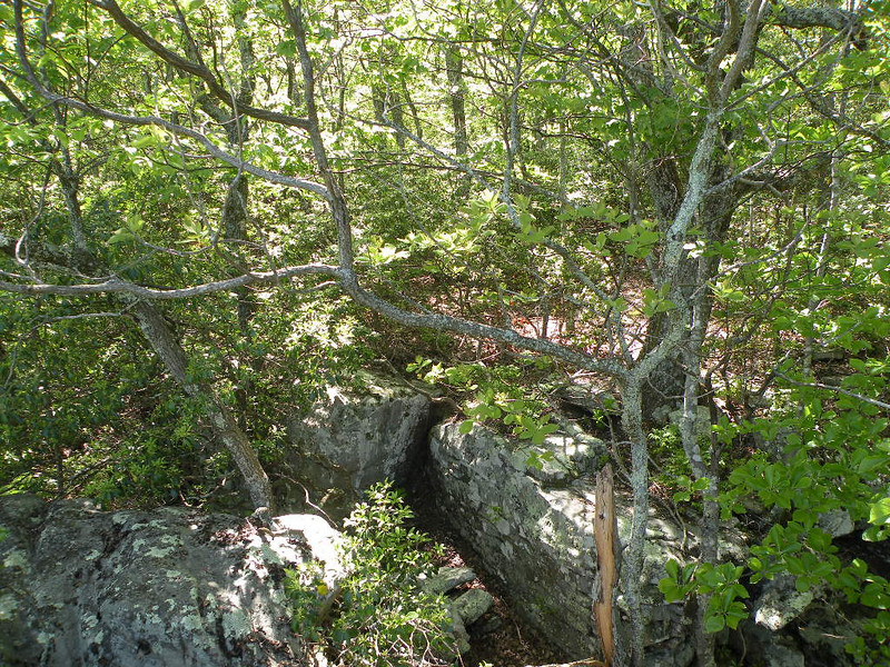 Lost Overlook.. the approach is interesting. More spots to jump from rock to rock.  Cumberland Trail, Brady Mtn. TN