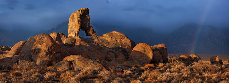 Lady Boot Arch