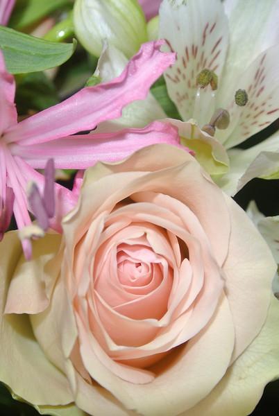 'RONNY & PASCAL' Bloemen voor Maintje 2012-11-11 12.JPG