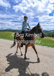 VT 100 Horses