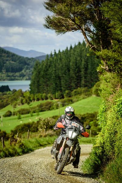 2019 KTM New Zealand Adventure Rallye (1179).jpg