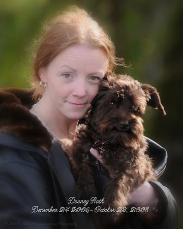Our Pet Companions