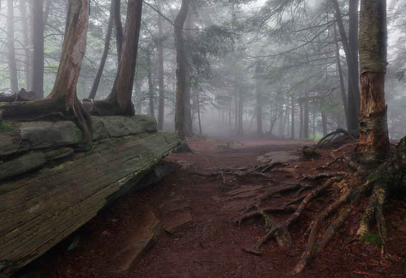 Highland Trail, Ricketts Glen