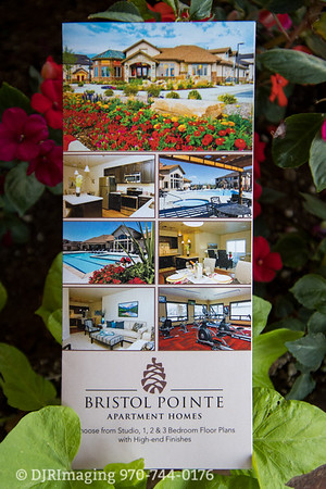 Loveland Chamber - Business Before Hours @ Bristol Pointe Apartments - 07/17/2019