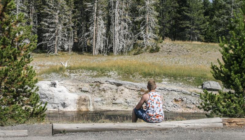 Yellowstone-8629.jpg