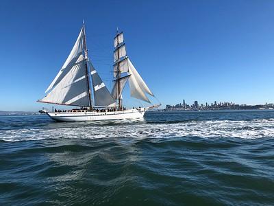 Matthew Turner Sail