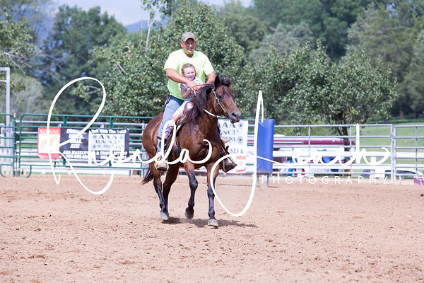 AAA Ranch and Arena 7-15-17 Exhibiton