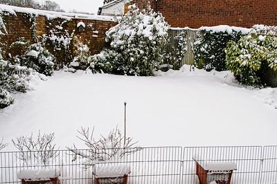 A Snowy Day - Jan 2013