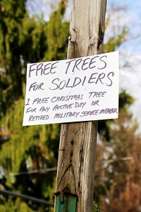 Cauley's Florist and Garden Center Trees for Soldiers