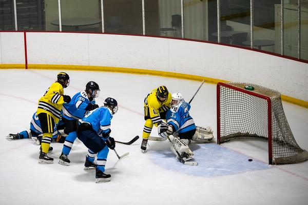Ice Hockey: Vianney vs Francis Howell