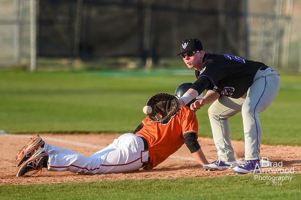 NDHS JV Baseball vs South Stokes