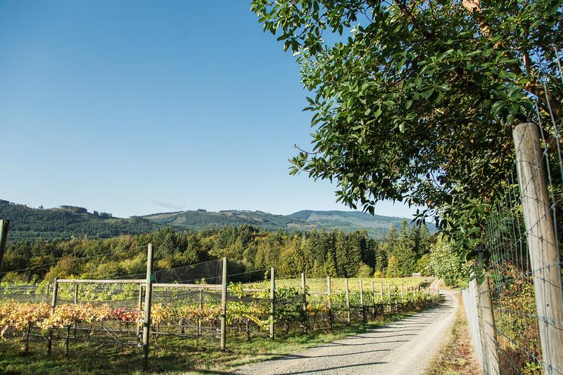 20160927_BC Wine Institute - Vancouver Island Region-1001.jpg