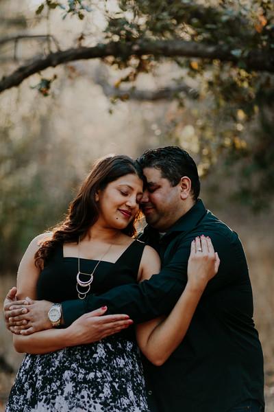 Swapna and Atul Engagement-36.jpg