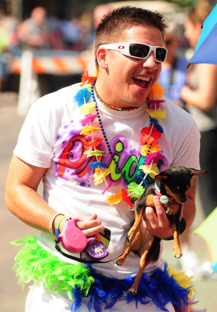 . Chris Ebner Myhers of Plymouth brought his chihuahua to the parade. (Pioneer Press: Scott Takushi)