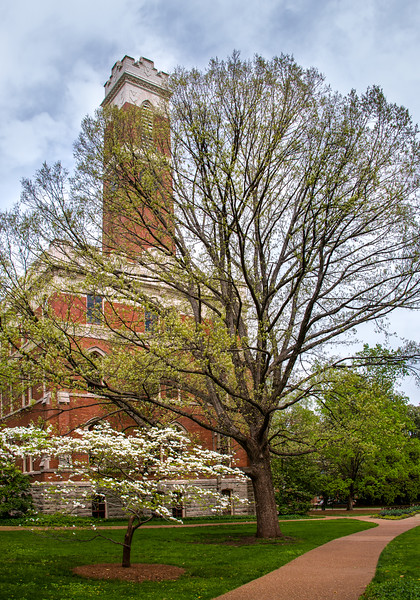 Spring at Vanderbilt-20150410-18_11_49-Rajnish GuptaAnd2more-Edit.jpg