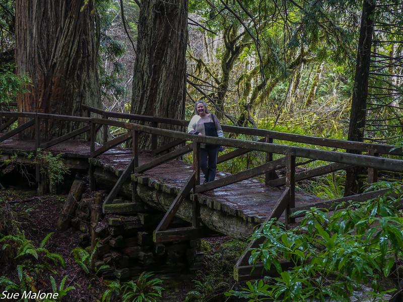 02-13-2021 Prairie Creek Redwood SP-8.jpg