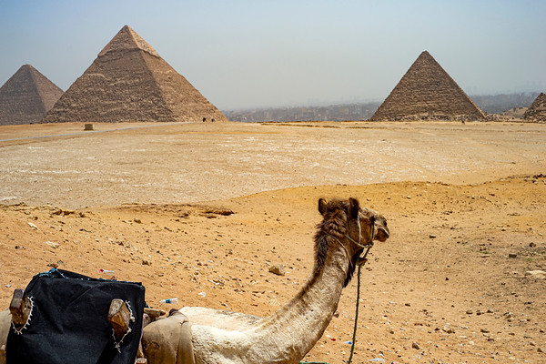 Egypt (Cairo and the Pyramids)