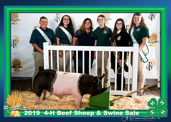 4-H Beef Sheep Swine Sale 2019