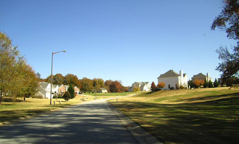 Holly Trace City Of Ball Ground GA Neighborhood (11).JPG