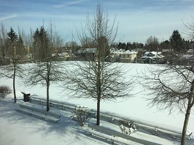 Snow Days 2017