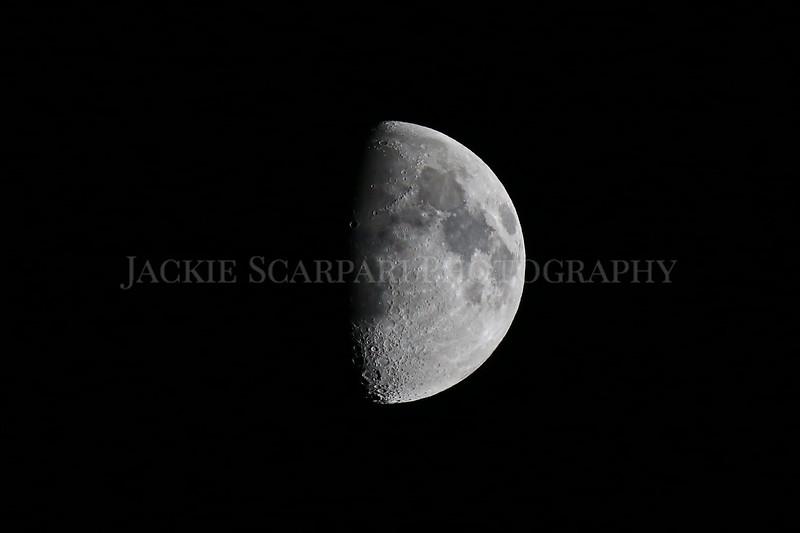 moon copy 2.jpg