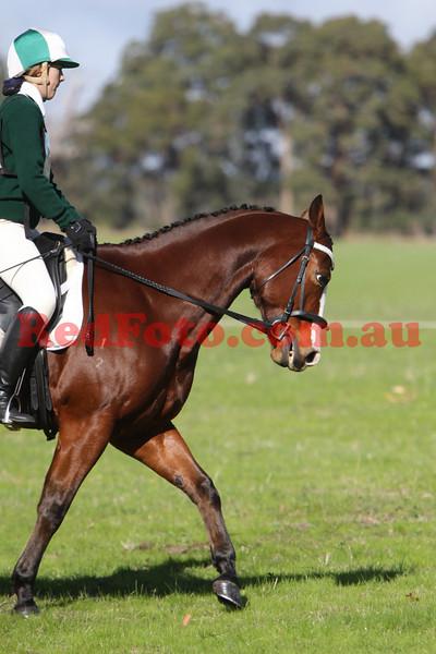 2009 06 13 Log Fence ODE Dressage All Arenas 12-00 till 1:25pm