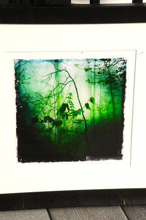 """Enchanted Portal"" by Brenda Knosher"