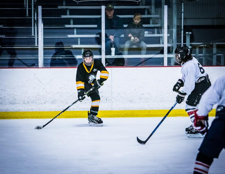 Bruins2-340.jpg