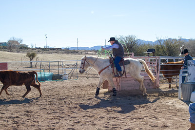 2017-Sunday Roping-0005