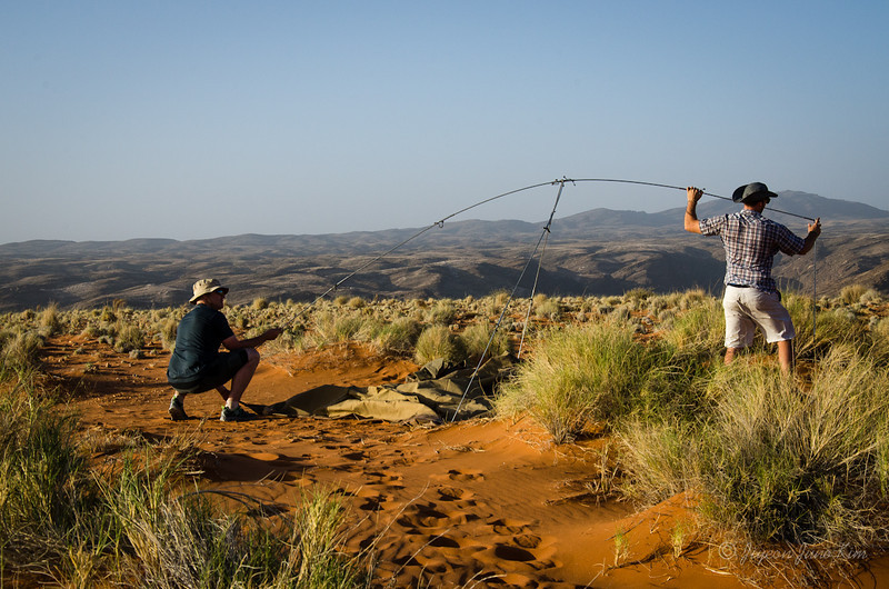 Namibia-4228.jpg