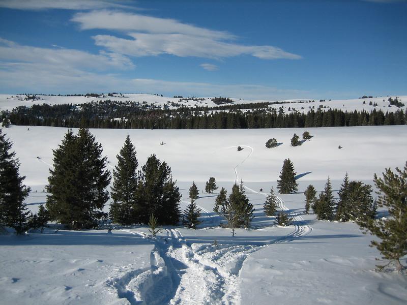 Bear Lodge Jan09 017.jpg